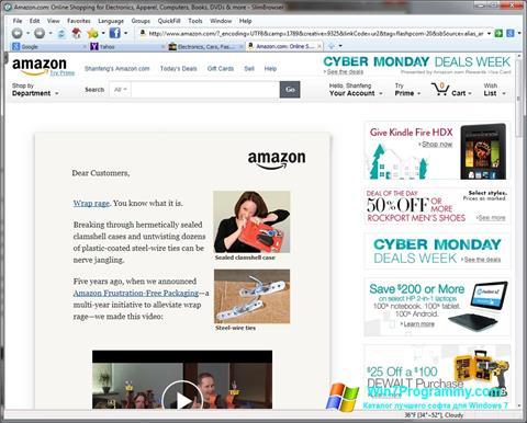 Скриншот программы SlimBrowser для Windows 7
