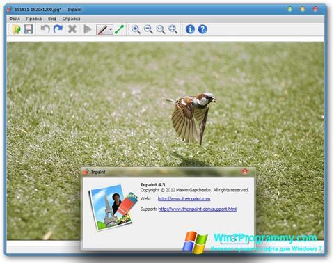 Скриншот программы Inpaint для Windows 7