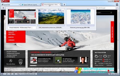 Скриншот программы Opera для Windows 7