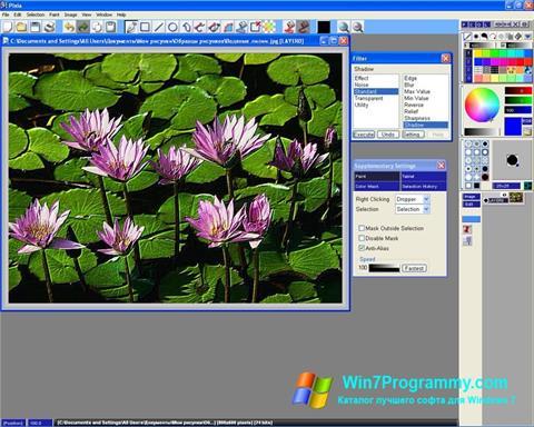 Скриншот программы Pixia для Windows 7