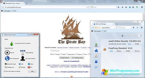 Скриншот программы Tor для Windows 7