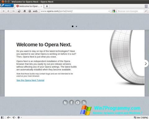 Скриншот программы Opera Developer для Windows 7