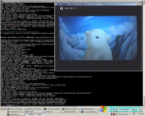 Скриншот программы MPlayer для Windows 7