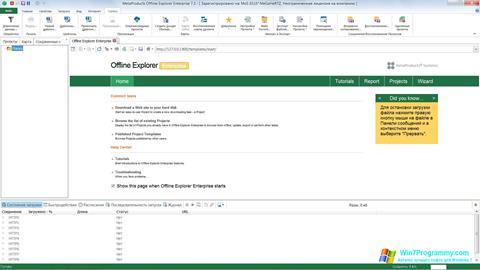 Скриншот программы Offline Explorer для Windows 7