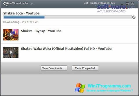 Скриншот программы RealDownloader для Windows 7