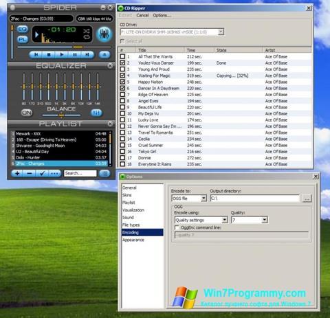 Скриншот программы Spider Player для Windows 7