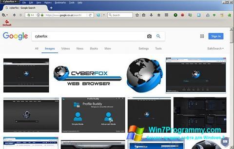 Скриншот программы Cyberfox для Windows 7