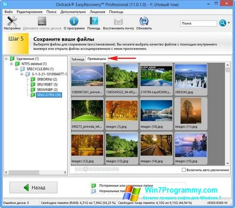 Скриншот программы EasyRecovery Professional для Windows 7