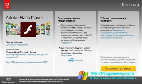 Скриншот программы Adobe Flash Player для Windows 7