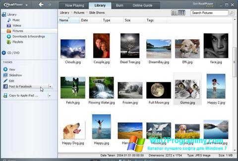 Скриншот программы RealPlayer для Windows 7