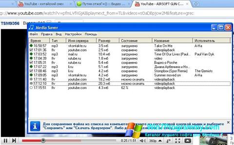Скриншот программы Media Saver для Windows 7