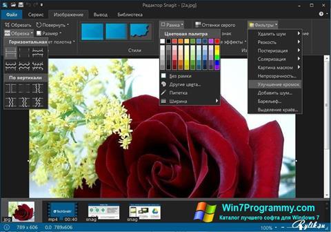 Скриншот программы Snagit для Windows 7