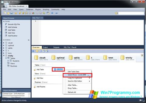 Скриншот программы MySQL Workbench для Windows 7