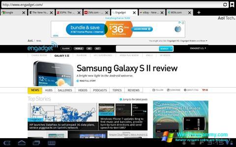 Скриншот программы Puffin для Windows 7