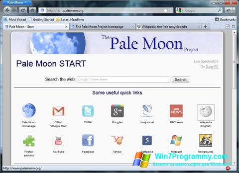 Скриншот программы Pale Moon для Windows 7